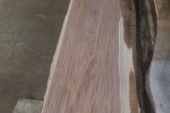 English-walnut-2