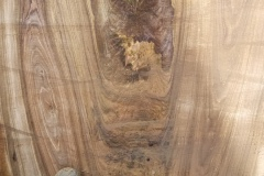 black-walnut-3